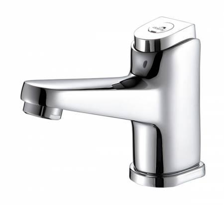 Self-Closing Time Delay Basin Sink Tap